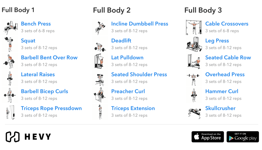 full body 3 day training split