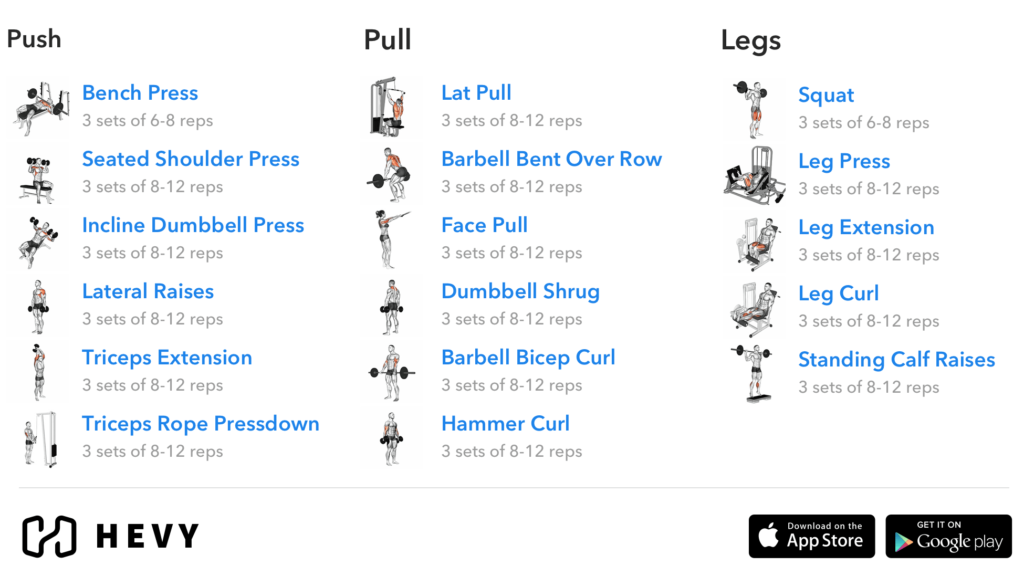 push pull legs workout split