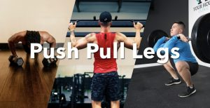 Push Pull Legs Workout Guide